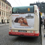 Back board - Autobus Irisbus (111x90 a 67x37 cm)